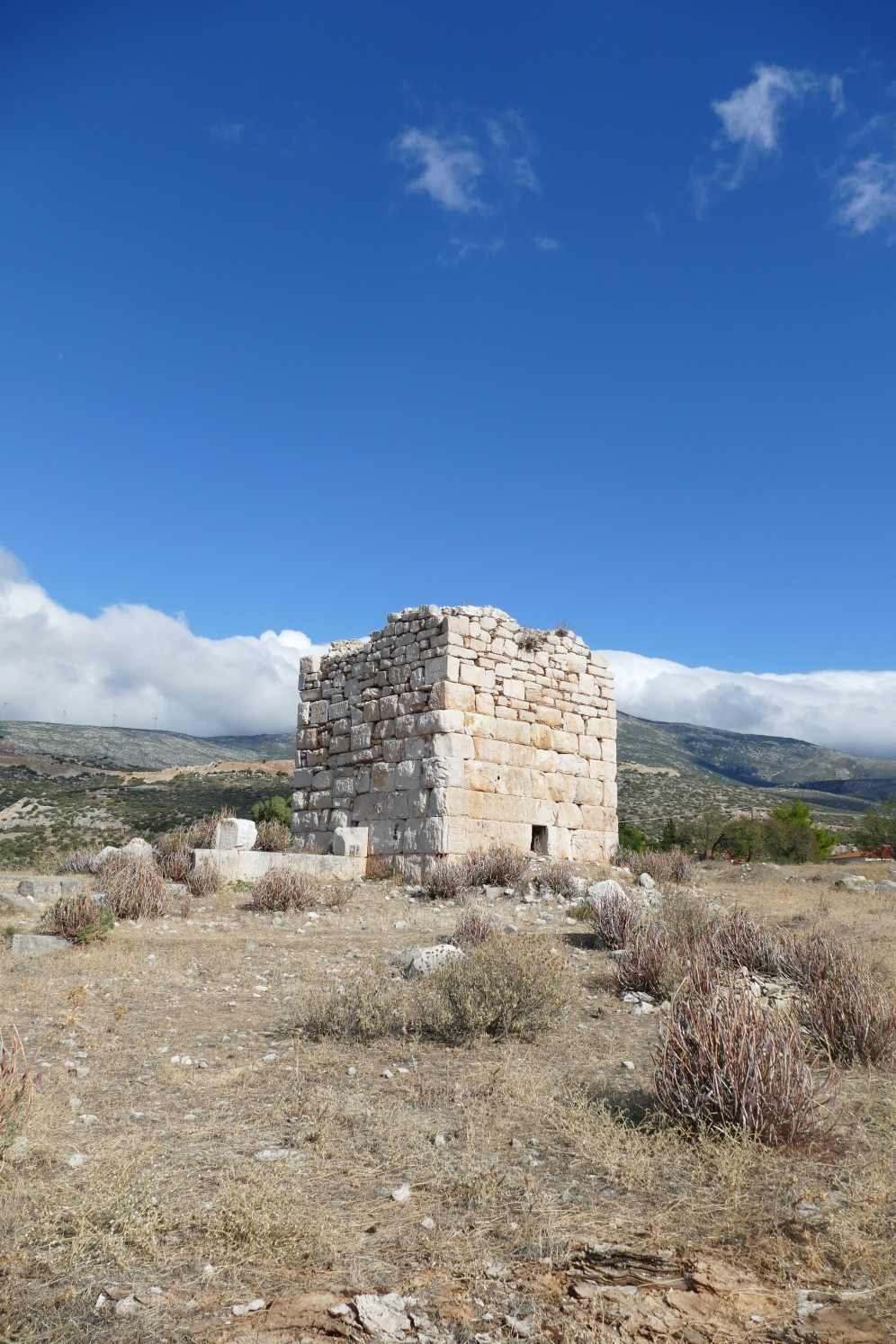 A tower at Thisbai
